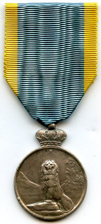 Commemorative Medal of the 1914–1917 African Campaigns - 1914–1917 African Campaigns Commemorative Medal (obverse)