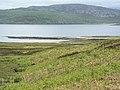 Corner of Eilean Dubh in Loch Eriboll - geograph.org.uk - 498145.jpg