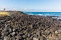 Costa de isla Santa Cruz, islas Galápagos, Ecuador, 2015-07-26, DD 48.JPG