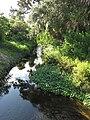 Crane Creek (Melbourne, Florida) 003.jpg
