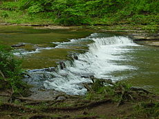 Crockett Falls in David Crockett State Park (Side View - June 2005)