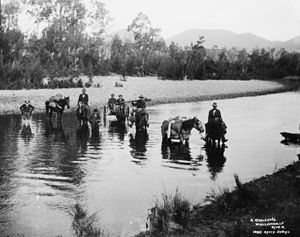 Wollondilly River - A trek crossing the river, circa 1900. Picture from the Powerhouse Museum.