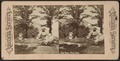 Crow Nest, West Point, from Robert N. Dennis collection of stereoscopic views.png