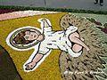 Cusano Mutri (BN), 2007, Infiorata. - Flickr - Fiore S. Barbato (11).jpg