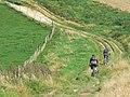 Cyclists on the Wessex Ridgeway, north-east of Avebury - geograph.org.uk - 970889.jpg