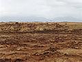 Dallol-Ethiopie (65).jpg