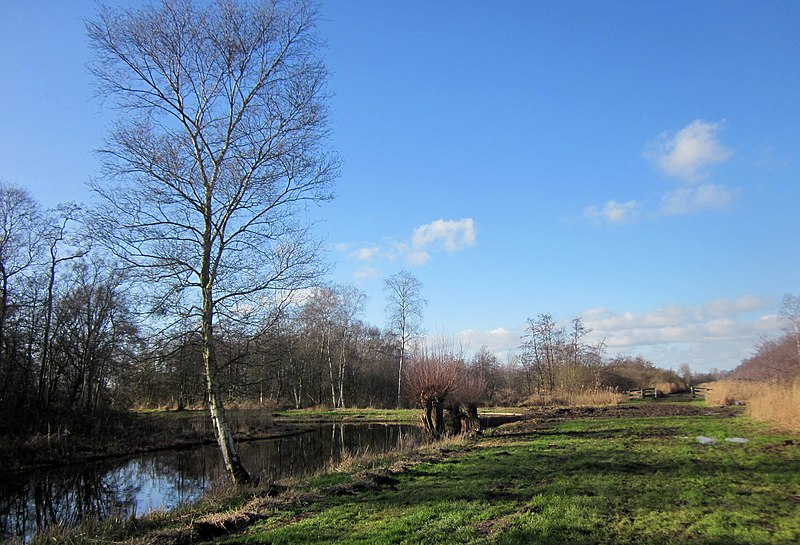 File:Dammerkade, Ankeveen. - panoramio (2).jpg