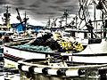 Dark Fleet 138.jpg