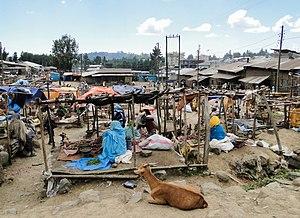 Debarq - Market in Debarq