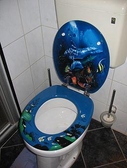 Decorative toilet seat