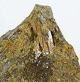 Denningite-Tellurite-214974.jpg