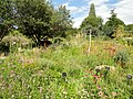 Denver Botanic Gardens - DSC01039.JPG