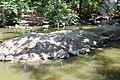 Denver Zoo 24.jpg
