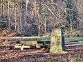 Der Distriktstein (8) wurde 1952 erstellt unter der Leitung von Forstmeister Knödler - panoramio.jpg