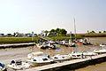 Des petits fileyeurs de Mortagne-sur-Gironde à marée basse (1).JPG