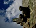 Detalles desde la torre de Vilanova dos Infantes 09.png
