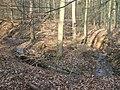 Deutergraben im Wald oberhalb Waldteiche.jpg