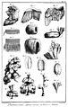 Différents ouvrages du plumassier-panachier XVIIIe siècle.jpg