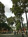 Dinh Tien Hoang, binh thanh ,hcmvn - panoramio.jpg