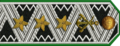 Director General of the River Fleet Administrative Service 1st Rank Armed R.png