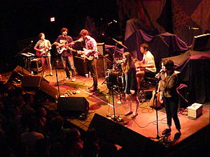 Dirty Projectors - Dirty Projectors in 2009