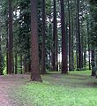 Disc Golf Course - panoramio.jpg