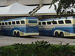 Disney Magical Express Buses (13887126340).jpg