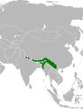 Distribution hirondelle Népal.png
