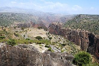 Socotra - Dixam canyon