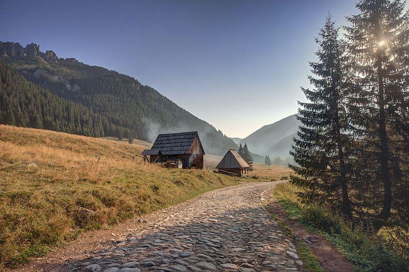 File:Dolina chochołowska o świcie.jpg