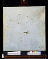 Dolls-house Ceiling-Painting of a Cloudy Sky with Birds.jpeg