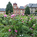 Domdechaneigarten Fulda (10).JPG
