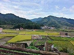 Dongxing Village.jpg