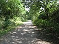 Downs Link path, formerly the Shoreham to Horsham line - geograph.org.uk - 1419249.jpg