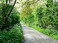 Drain Lane towards Throlam - geograph.org.uk - 184771.jpg