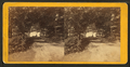 Drive around the base of Megunticook Mountain. Megunticook Lake is seen through the trees. Camden, Maine, from Robert N. Dennis collection of stereoscopic views.png
