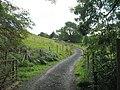 Driveway to Bron Manod house - geograph.org.uk - 560149.jpg
