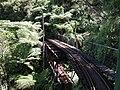 Driving Creek Railway No 7 bridge double-deck viaduct.jpg
