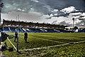 Dublino. RDS Arena - panoramio.jpg
