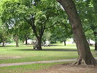 Dufferin Grove Park.jpg