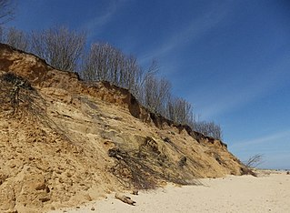 Norwich Crag Formation