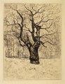 Edvard Munch The Oak Thielska 297M45.tif