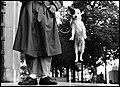 Eliot Ervit, Pariz, 1989.jpg