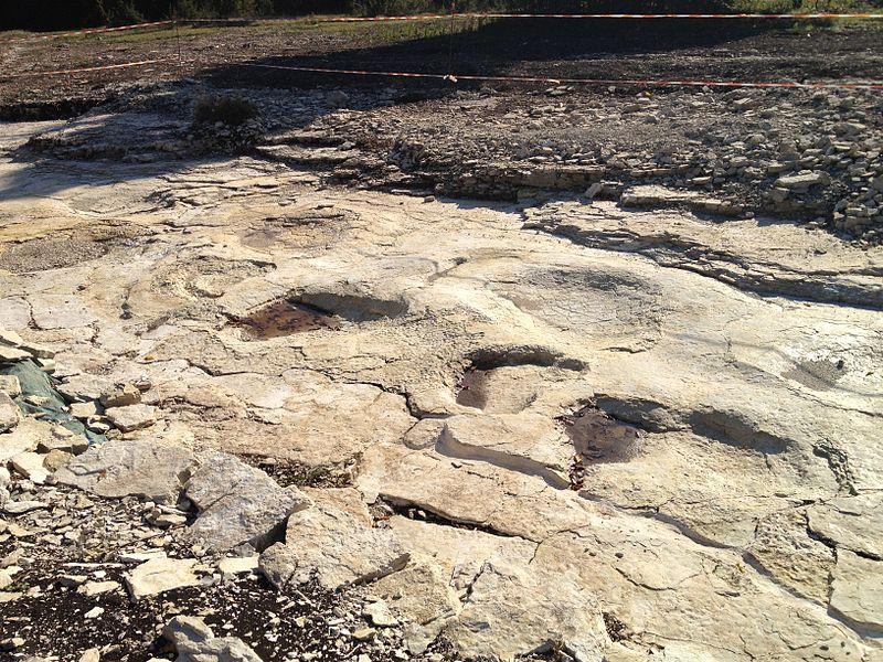 Empreintes de sauropode sur la commune de Plagne (Ain), sur le site de «Dinoplagne»