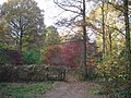 Entrance to the Autumn Garden - geograph.org.uk - 621539.jpg