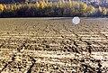 Erosion Netzwerk020.jpg