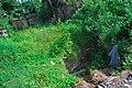 Erosion in vegetative grounds.jpg