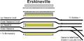 Erskineville trackplan.png