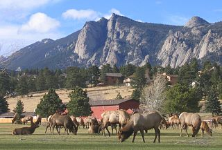 Estes Park, Colorado A statutory town in Larimer County, Colorado, United States