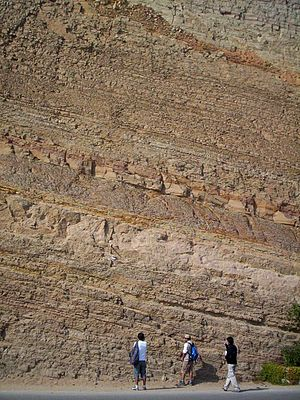 Bed (geology) - Tilted sedimentary bedding in shales of the Cretaceous Salto del Fraile Formation, Peru.